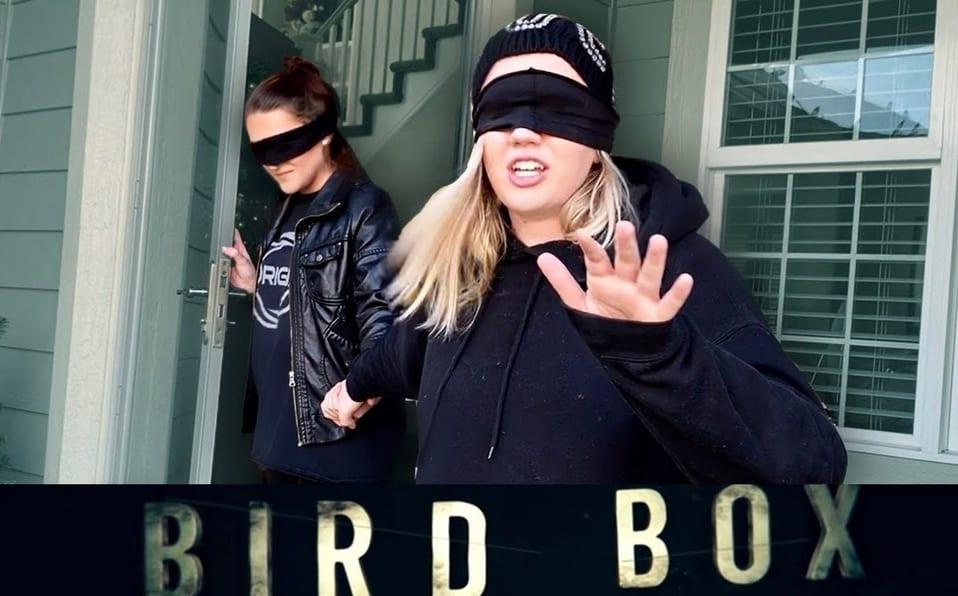 #BirdBoxChallenge