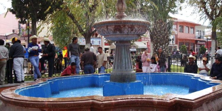PAN de Salinas