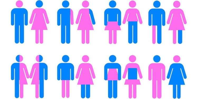 el sexo y el género