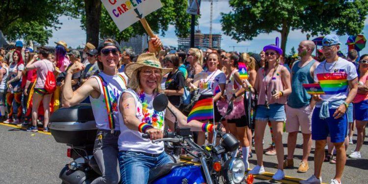 Activismos queer