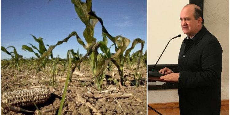 agricultores potosinos