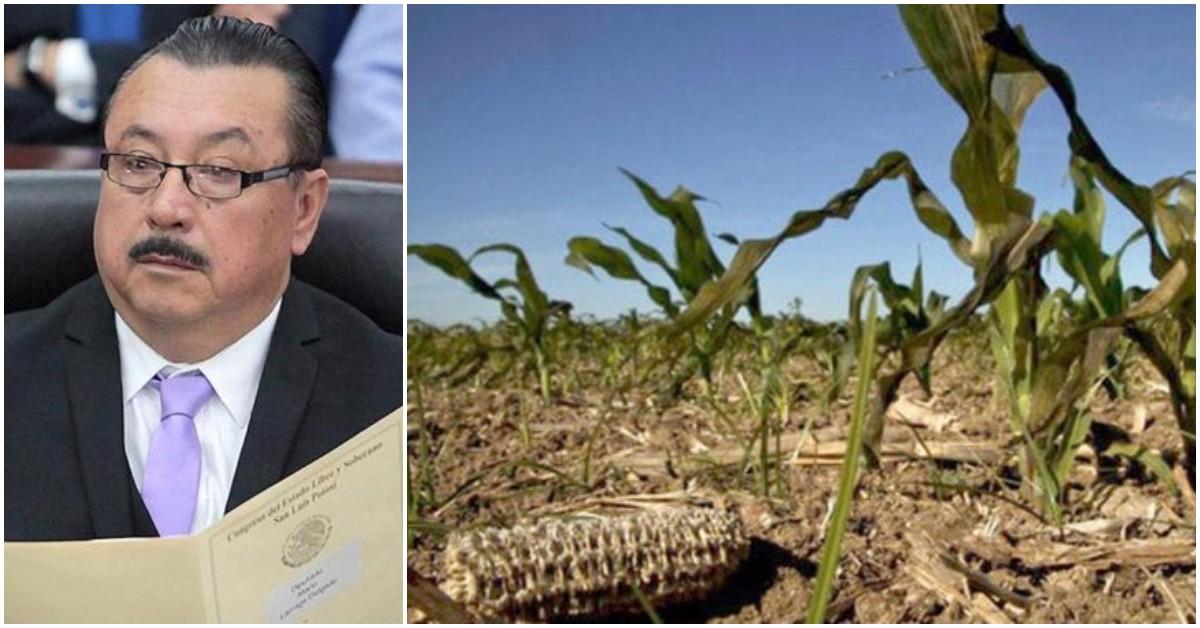 sequía en SLP