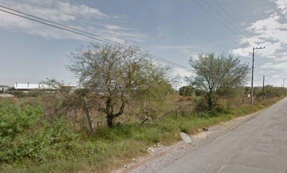 Camino al Aguaje