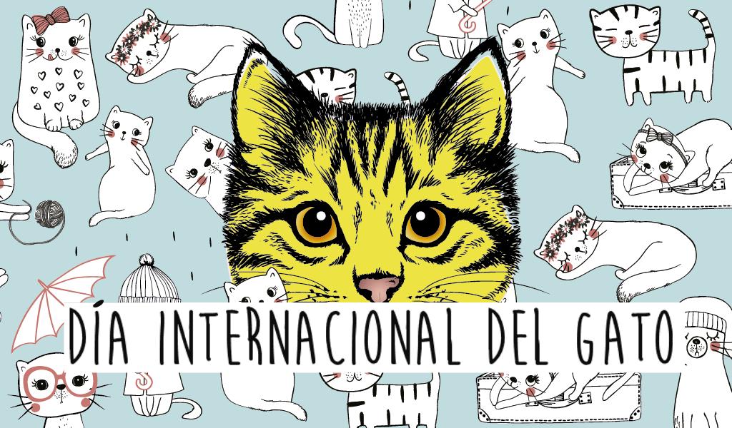 ¡Feliz tercer día internacional del gato! | Columna de Daniel Tristán